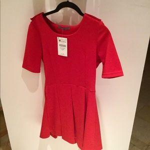 Zara Skater Dress